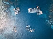 aquaculture_small.jpg