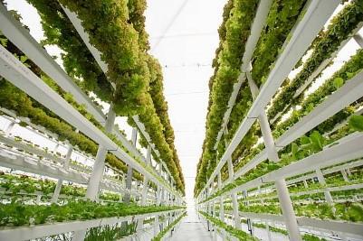 Feeding Australia: A sustainable future