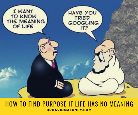 How to find purpose when life has no meaning