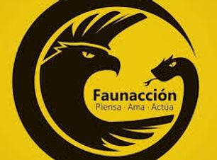 Faunaccion.jpeg