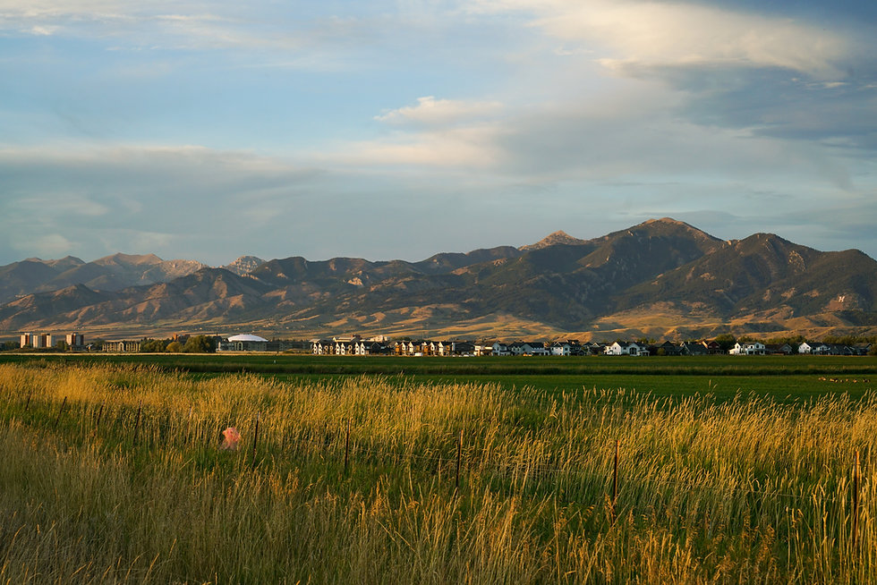 Taken while biking on the outskirts of Bozeman, looking towards the South end of Montana S