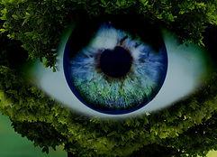 psychic-inteligence_edited.jpg
