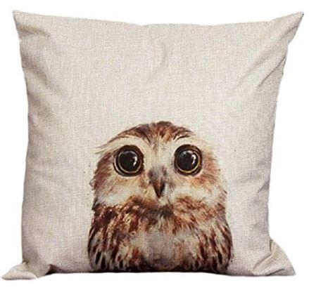Owl with Big Eyes Pillow