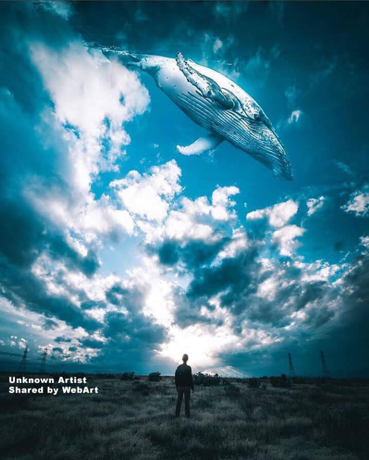Balena nelle nuvole