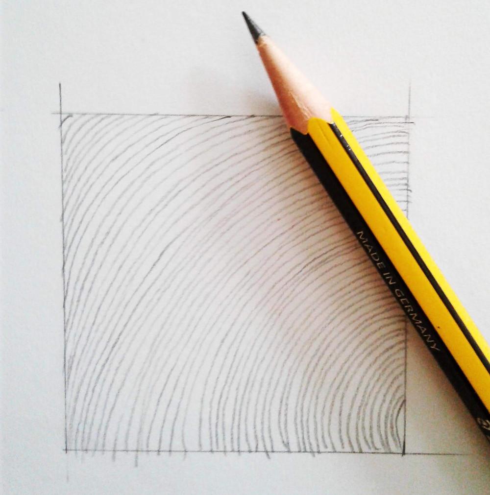 lezioni di disegno esercitazioni linee curve