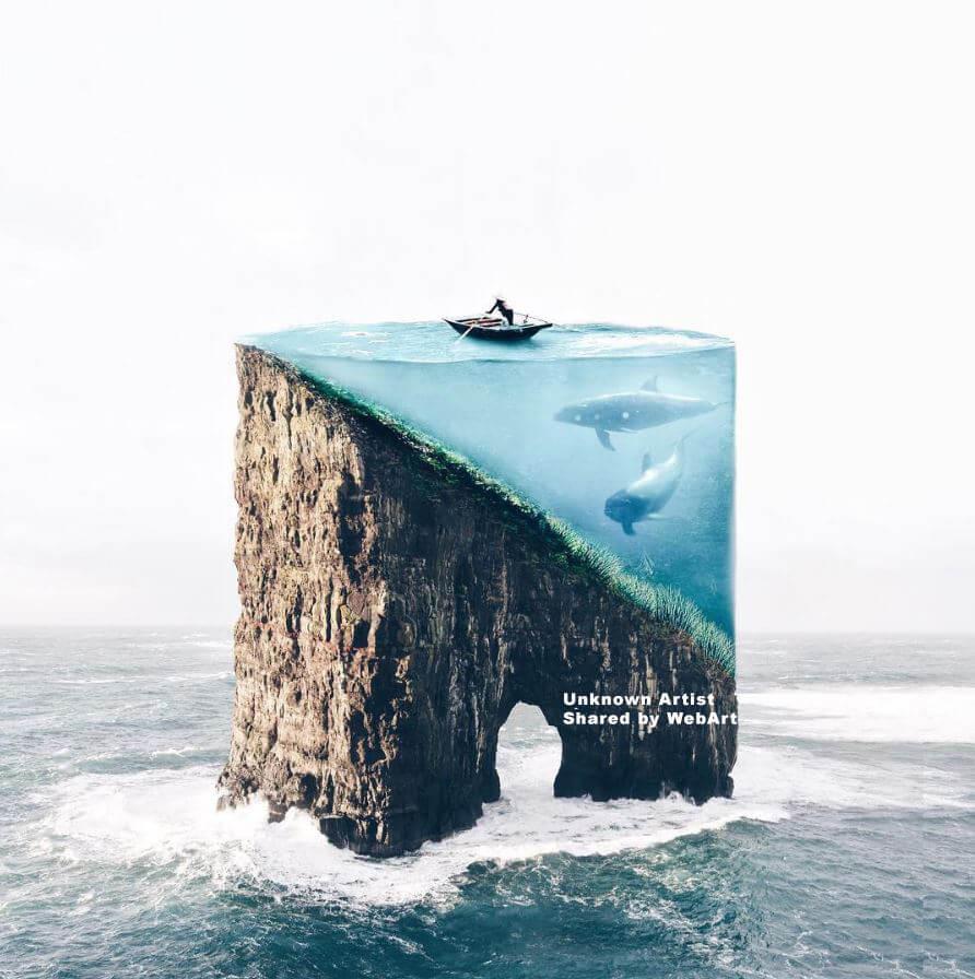 Delfini in blocco d'acqua