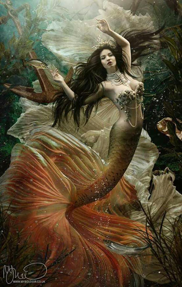 illustrazione arte sirena