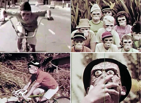 MONKEY MASKS - Weekend Wolves & Boards of Canada