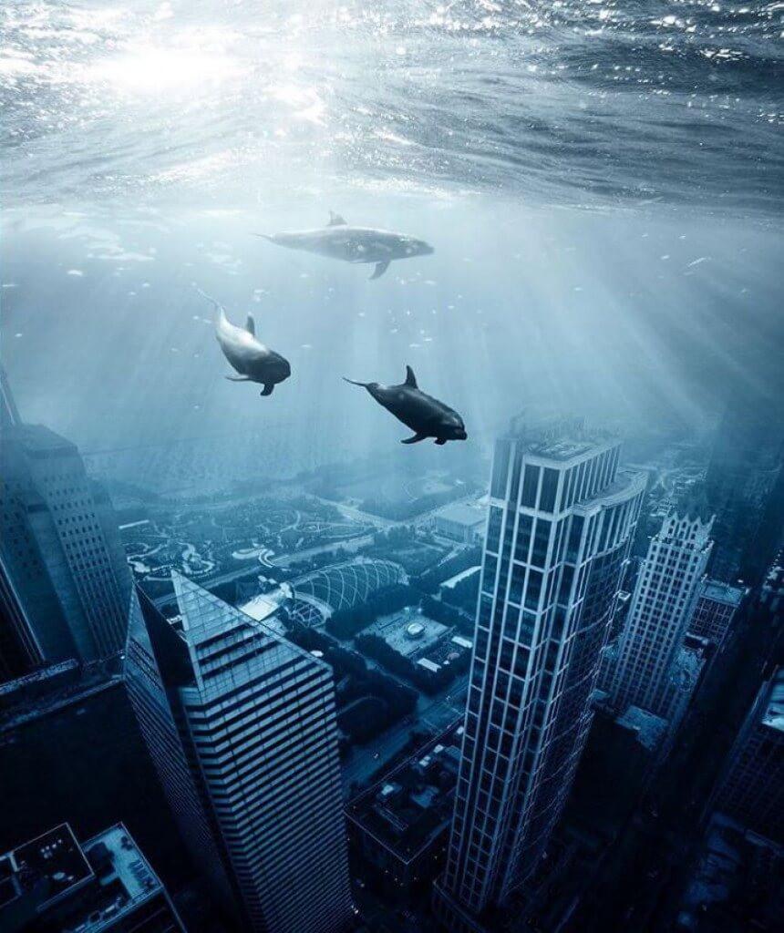 Delfini sulla Metropoli sommersa