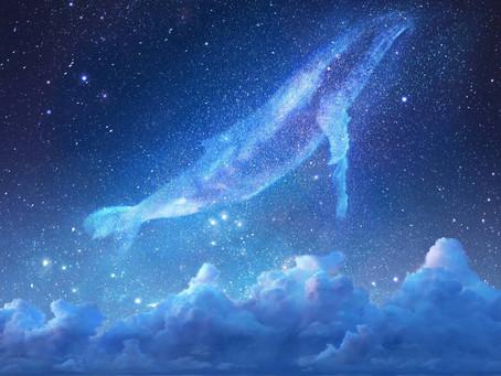 Balene nei Cieli - Raccolta Immagini