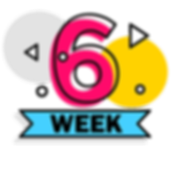 Week 6-01.png