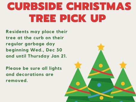 Christmas Tree Curbside Pickup