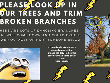 Please trim or report hanging branches!