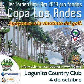 Afiche-Copa-Copa-Los-Andes-2018-Redes.jp