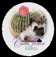 Cactus Flower Exotics Logo.png