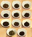 茶葉集合.png