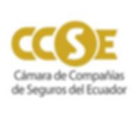 LogoCamseg2020.jpg