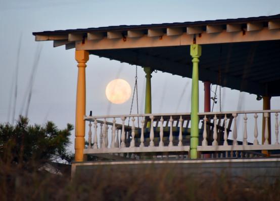 Full moon fever.