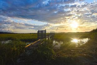 Sunrise on the tidal creek.