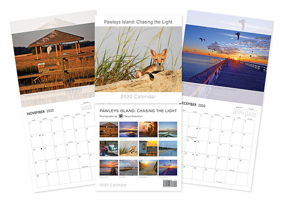 2020 Pawleys Island: Chasing the Light Calendar