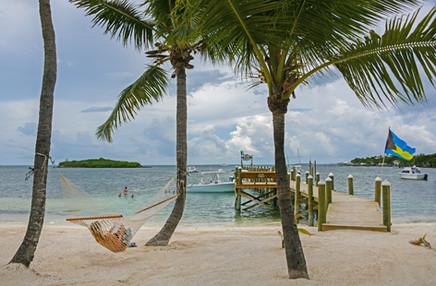 Bahama hammock.