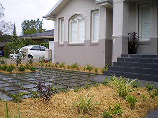 great Landscaping, perfect plants