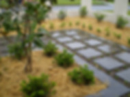 Stepstones, mondo grass, award winning gardens