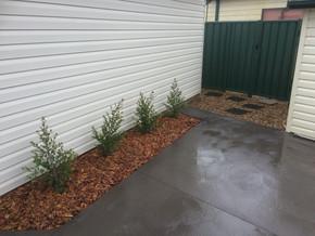 Gardening, Landscaping