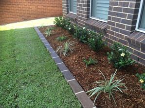 Garden, Plants, Soil