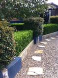 buxus, sandstone wall, garden lighting
