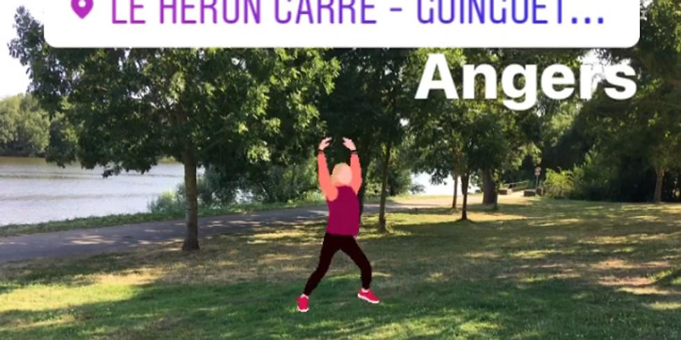 Séance sportive #3 Cardio & Gainage