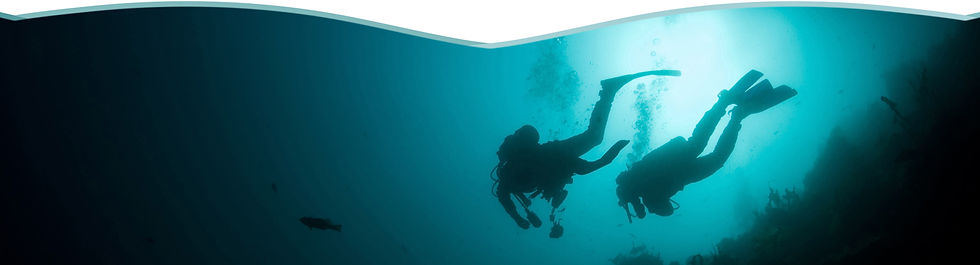 divers paradise 08.jpeg