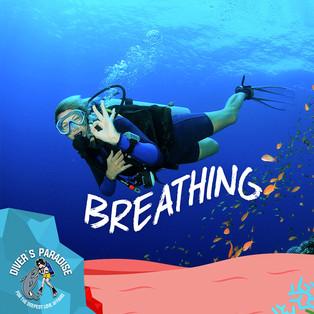 Divers Paradise 06.jpg