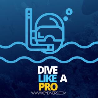 Divers Paradise 07.jpg
