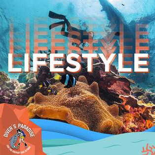 Divers Paradise 01.jpg