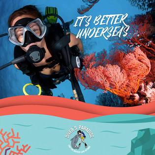 Divers Paradise 04.jpg