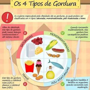 Conhecendo as Gorduras