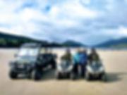 Gator & bikes beach.jpg