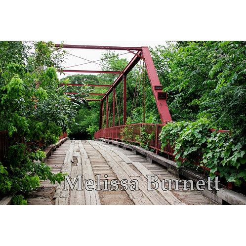 Bridge Photo Print