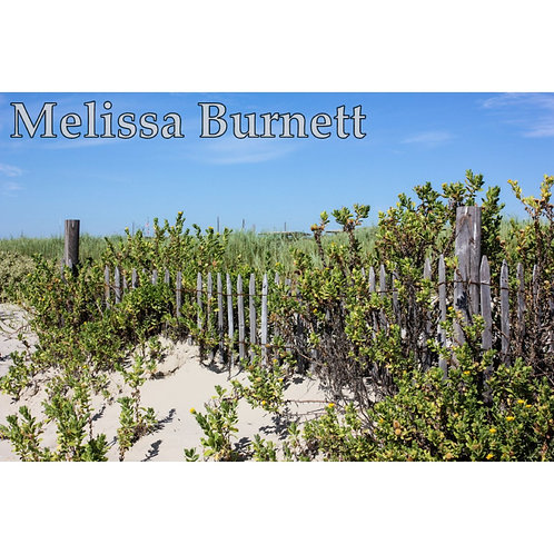Beach Fence Photo Print