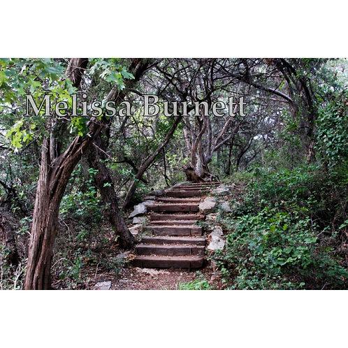 Stairs Photo Print