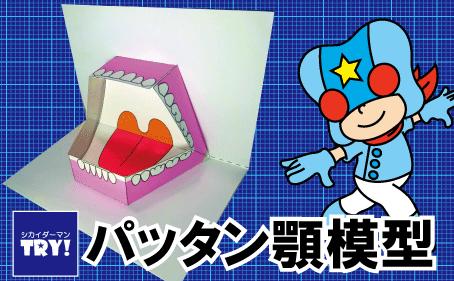 ペーパークラフト「パッタン顎模型」(歯の模型)