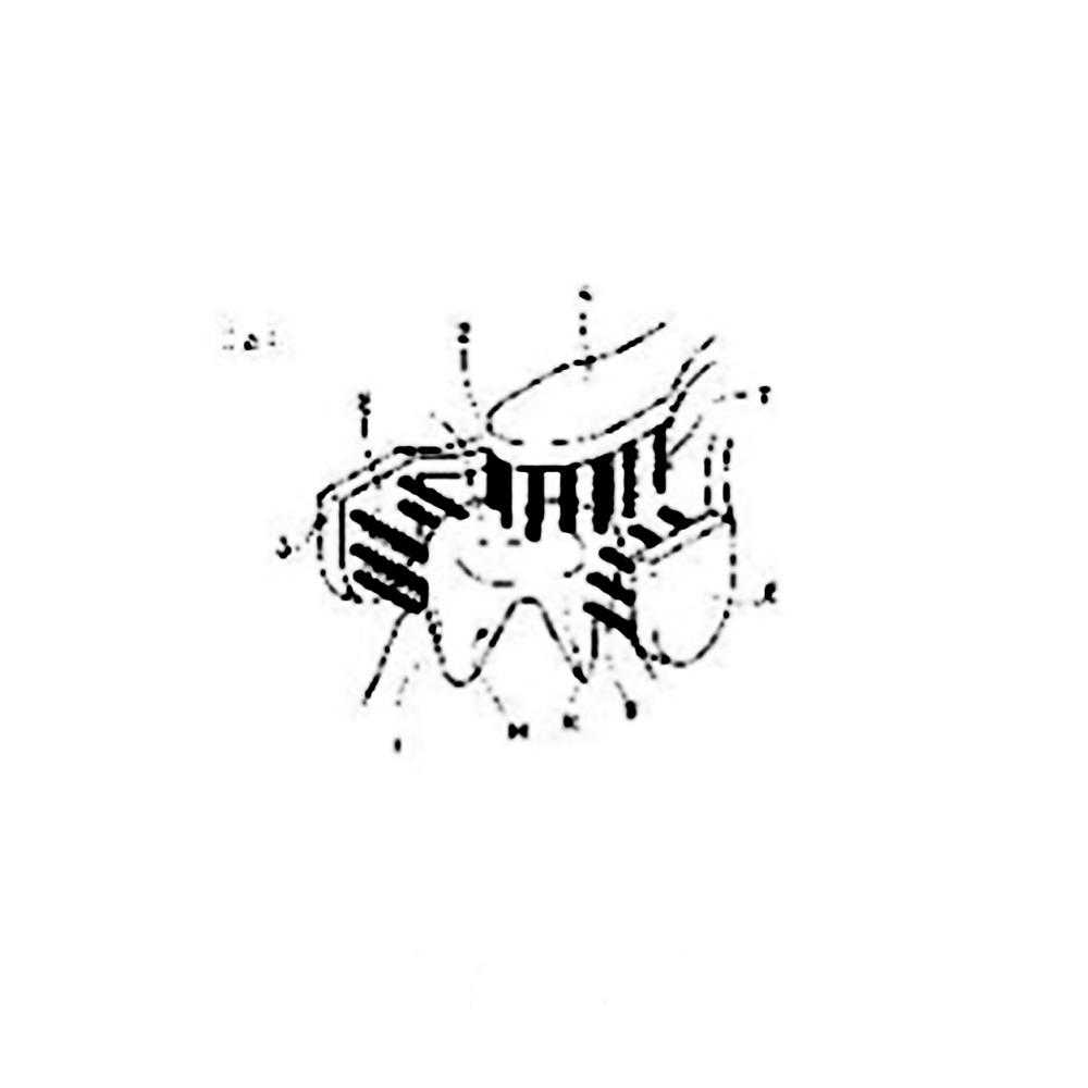 【歯ブラシ特許64】おしくら饅頭ハブラシ