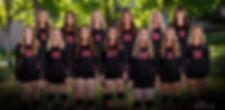 North Sanpete Volleyball Team