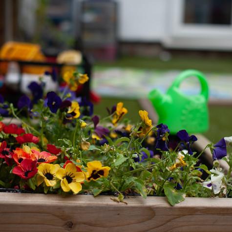 Flowers NF.jpg