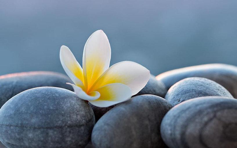flower rock image.jpg