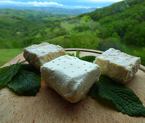 fromage de brebis, fromage frais