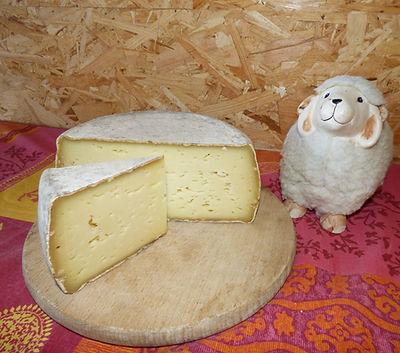 Tomme de brebis, fromage de brebis, fromage affiné