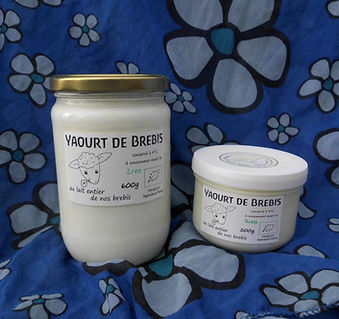 Yaourt de brebis, pot en verre, yaourt doux