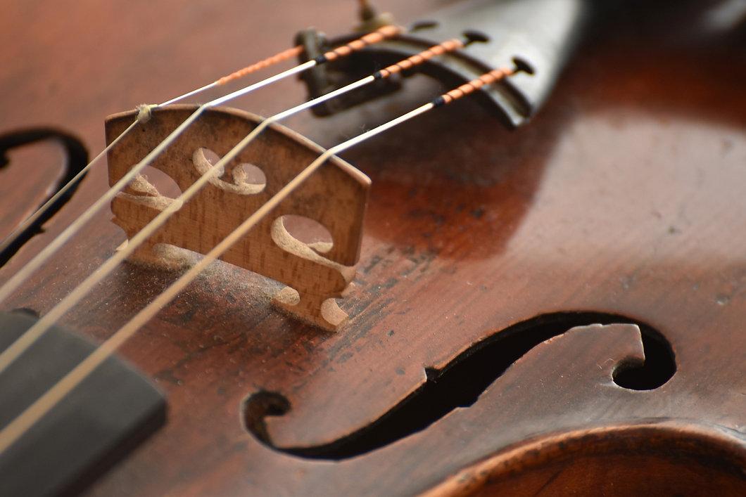 violin-3886139_1920.jpg